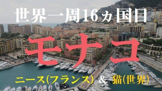【動画で解説】世界一周16ヵ国目はモナコ!世界の猫やニース観光